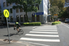 Pedestrian & Cycling Studies